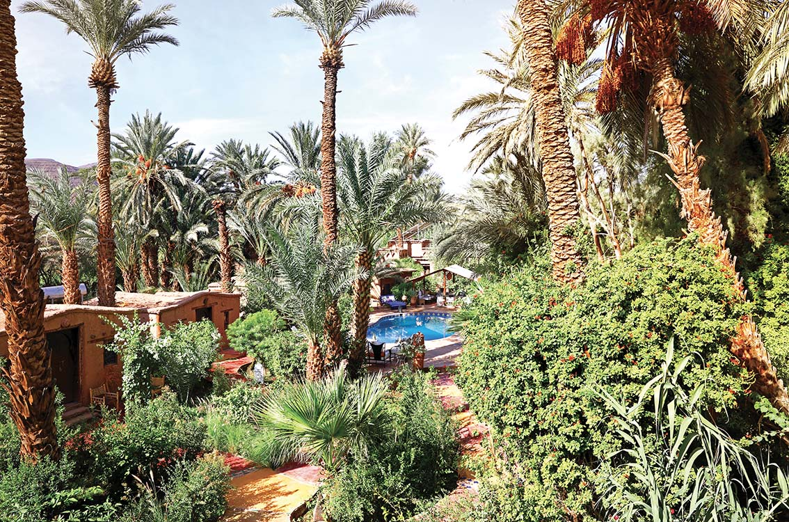 «Glamping» à Bab el Oued